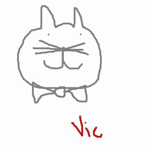 bowtiecat